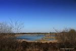 Finnamore Lake