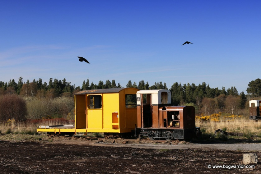 One of the old bog trains